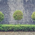 Walled garden in Singapore